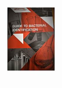 Pdf  Guide To Bacterial Identification