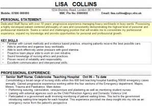 personal statement exles curriculum vitae personal statement exle for cv