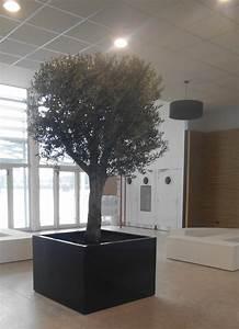 Gros Pot Pour Olivier : fioriera fioriera da interno per alberi image 39 in ~ Melissatoandfro.com Idées de Décoration