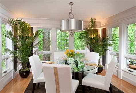 ways  decorating  interior  green plants home
