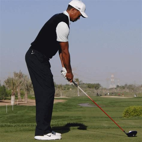 Tiger Woods 2013 Swing Sequence GIF   Golf tips, Golf ...