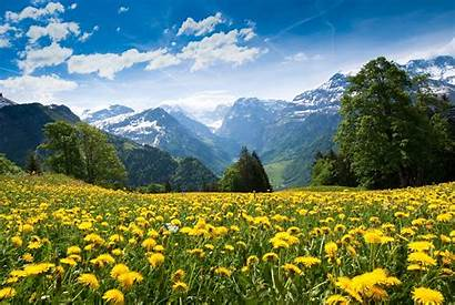 Summer Landscape Mountain Desktop Backgrounds Wallpapers Clouds