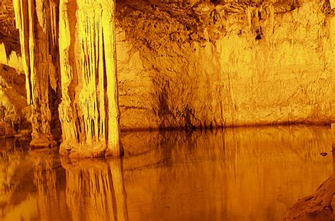neuseeland höhle der glühwürmchen sardinien