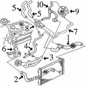 Circuit De Refroidissement : circuit de refroidissement inca 1 9 tdi moteur alh de 90cv apres 2000 alpazo pi ces ~ Medecine-chirurgie-esthetiques.com Avis de Voitures