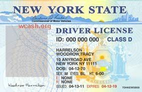 drivers license template psd template new york drivers license editable photoshop file psd cena