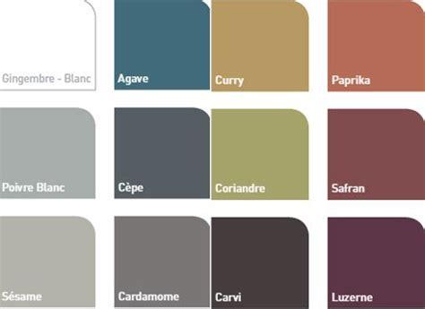 nuancier 12 couleurs peinture protectactiv v33