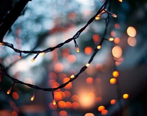 pumpkinrot com what s brewing orange lights
