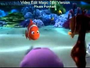 anemona anemica anonima avi YouTube