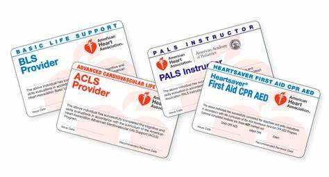 Lorrie is also a certified. AED, First AID, Bay Area, BLS, CPR Classes, EMSA  American ...