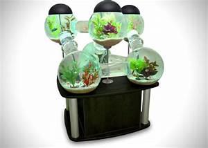 Aquarium Dekorieren Ideen : tolles labyrinth aquarium ~ Bigdaddyawards.com Haus und Dekorationen