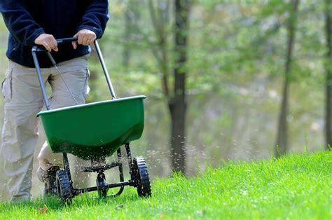 When To Apply Crabgrass Pre-emergent In Mn