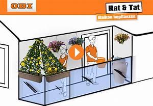 Sonnenschirmhalterung Balkon Obi : die richtigen pflanzen f r ihren balkon obi ratgeber ~ Yasmunasinghe.com Haus und Dekorationen