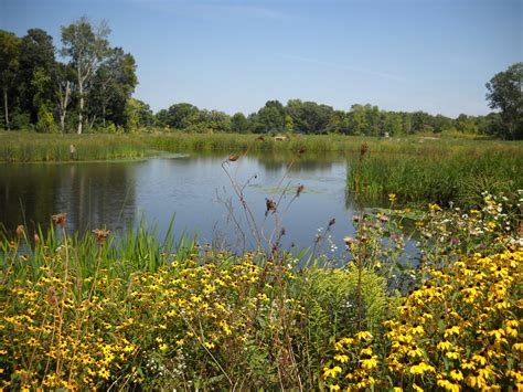 owen park ponds stormwater management engineering city of