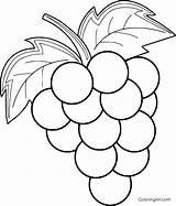 Grapes Coloring Printable Fruit Grape Para Vector Cartoon Frutas Any Adult Format Sheets Drawing Colorir Paper Device sketch template