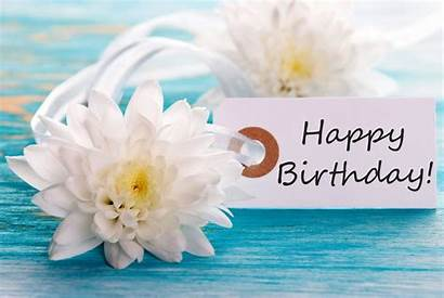 Birthday Happy Flowers Flower Card Dog Wallpapers
