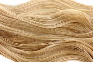 Subtle change in DNA, protein levels determines blond or ...