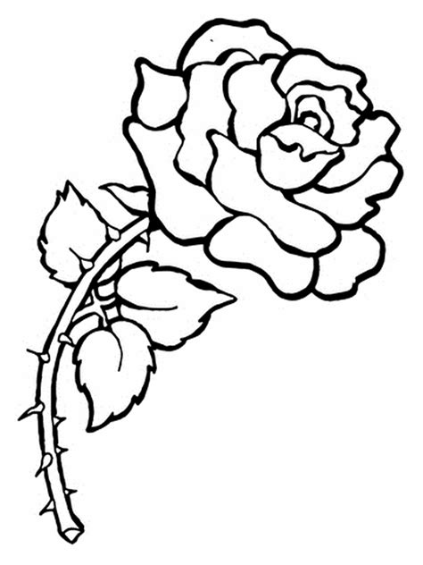 rose petal coloring pages  getcoloringscom
