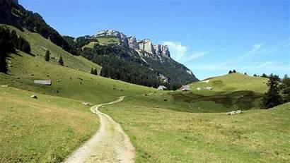 Hiking Trail Desktop Wallpapers Koeien Landschap Achtergrond
