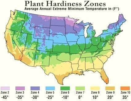 Plant Hardiness Zones 9 Through 11 Ideomotorclub