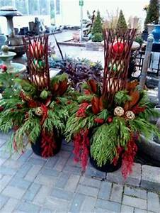 1000 images about Winter pot ideas on Pinterest