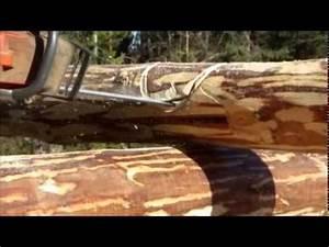 Rond En Bois : construction d une cabane en bois rond en laponie su doise youtube ~ Teatrodelosmanantiales.com Idées de Décoration