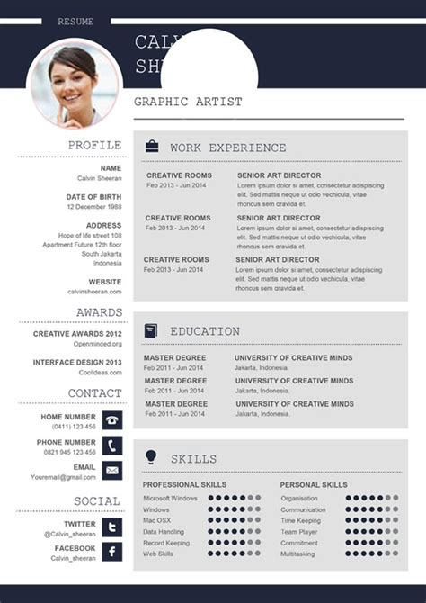 Template Cv Professionnel by Professional Cv Ms Word Template Editable Downloadable