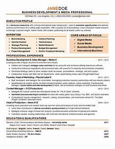 Digital marketing resume example pinterest sample for Digital resume template