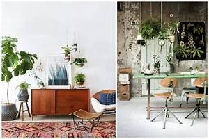 Suspension Pour Plante Interieur : 14 id es pour d corer sa maison avec des plantes vertes ~ Teatrodelosmanantiales.com Idées de Décoration