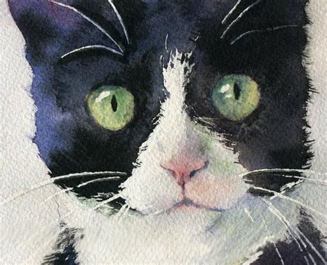 Abstract Black Cat Watercolor by Details About Giclee Print Watercolor Painting Tuxedo