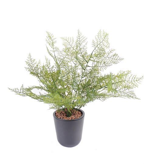 plante interieur et exterieur plante artificielle asparagus plastique int 233 rieur ext 233 rieur 50cm vert