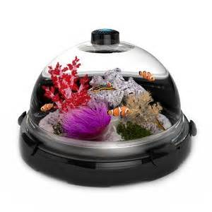 cat proof fish tank shows it can work for other animals as well butterflies