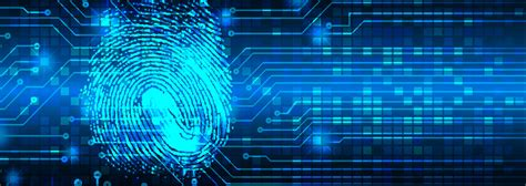 international cybercrime navigating  law   web