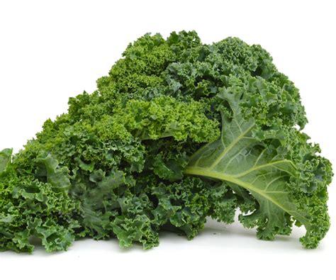 cuisiner le chou kale chou kale où acheter du chou kale chou kale infos