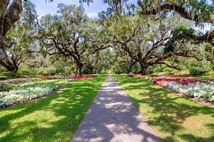 south carolina 39 s top outdoor attraction is and beautiful