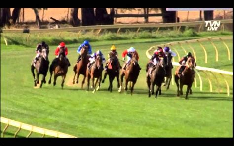 horse race nes after racing health providential treated wins being its