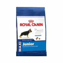 Royal Canin Maxi Junior : royal canin maxi junior comprar en indigo pets shop ~ Buech-reservation.com Haus und Dekorationen