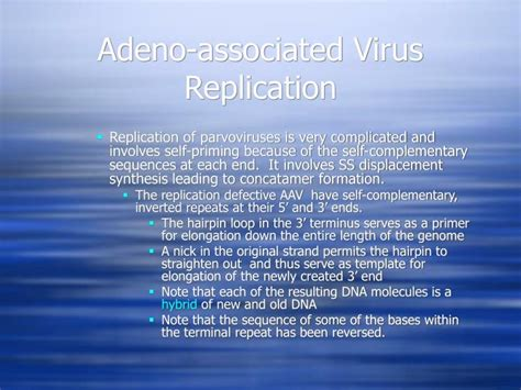 the leading strand template forms a priming loop ppt expression and replication of the viral genome in