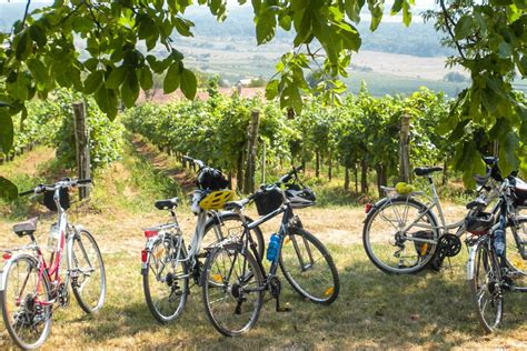 best european bike tours planning your europe bike tour travel past 50