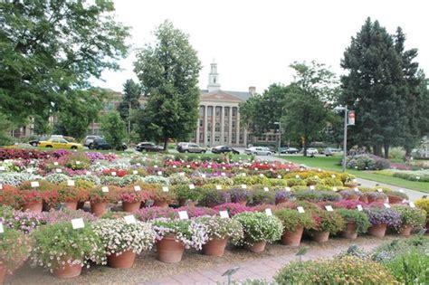 gardens at csu picture of annual flower trial garden