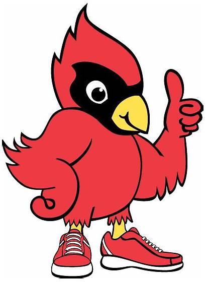 Cardinal Bird Mascot Clipart Elementary Number Tech
