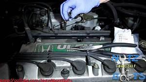 1999 Honda Accord Engine Oil System Diagram