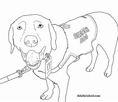 Dog Coloring Pages Dogs Fbi Service Working