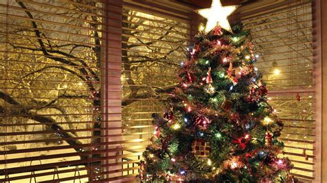 Christmas Tree Background, Picture, Image