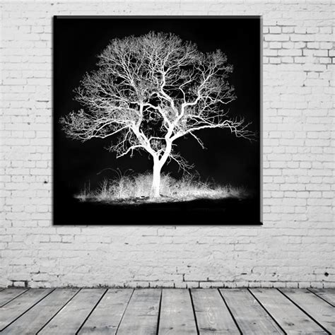 Using the black canvas technique create a startling rendition of a snowy landscape with the notorious northern lights of the arctic sky. black white tree decorations modular pictures spray painting on the wa - Elleseal