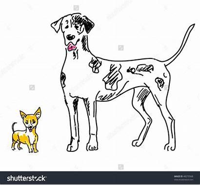 Clipart Dogs Smaller Dog Vector Clip Clipground