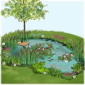 bassin naturel au jardin jardin a vivre jardineries With amenagement petit jardin avec terrasse 11 jardineries truffaut projet damenagement de jardin