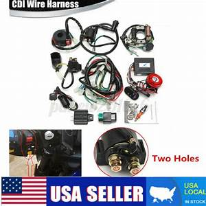Electric Wiring Harness Wire Magneto Stator For Go Kart