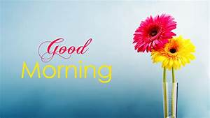 Good Morning Wallpaper with Flowers, Full HD 1920x1080 GM ...