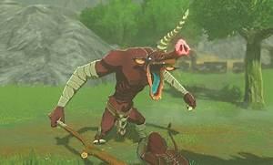 Moblin The Legend Of Zelda Breath Of The Wild Wiki