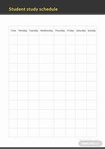 Teacher Schedule Template Daily Study Schedule Template Download 128 Schedules In